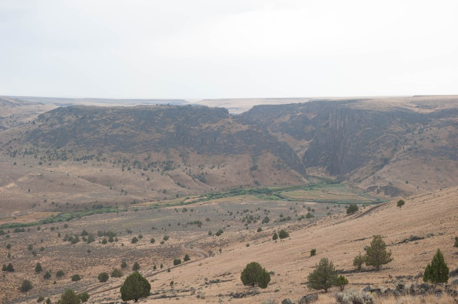 Looking down into Three Forks, Owyhee River.