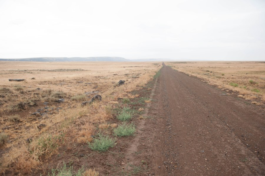 The 35 mile dirt road to Three Forks of the Owyhee.